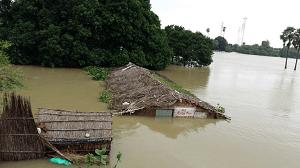 bihar-flood-pic5